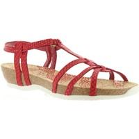 Sapatos Mulher Sandálias Panama Jack DORI RUN B5 Rojo