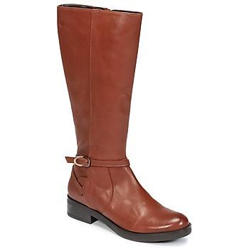 Sapatos Mulher Botas Betty London HOVANI Camel