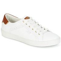 Sapatos Mulher Sapatilhas Molly Bracken MALIO Branco