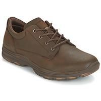 Sapatos Homem Sapatilhas Skechers MENS USA Castanho