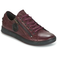 Sapatos Mulher Sapatilhas Pataugas JESTER Bordô