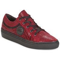 Sapatos Mulher Sapatilhas Pataugas YORK Vermelho
