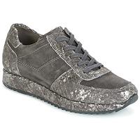 Sapatos Mulher Sapatilhas Perlato TINA Cinza