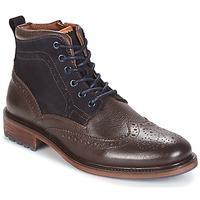 Sapatos Homem Botas baixas Coxx Borba RESERVA Castanho / Marinho