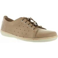 Sapatos Homem Sapatilhas Panama Jack IRELAND C6 Beige