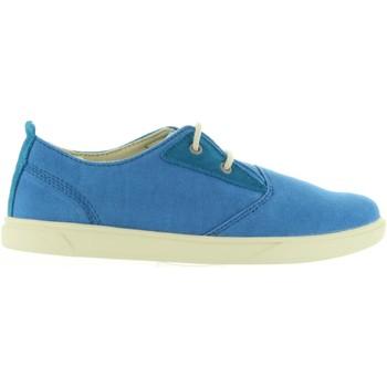 Sapatos Criança Sapatilhas Timberland A1JAJ GROVETON Azul