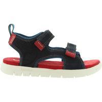 Sapatos Criança Sandálias Timberland A1LOF PIERMONT Azul