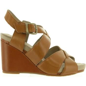 Sapatos Mulher Sandálias Hush puppies 560602-50 FINTAN Marr?n