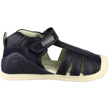 Sapatos Criança Sandálias Biomecanics  MARINO