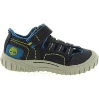 Sapatos Mulher Sandálias Timberland CA1L8E CASTLETON Azul