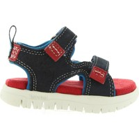Sapatos Mulher Sandálias Timberland CA1LN6 PIERMONT Azul