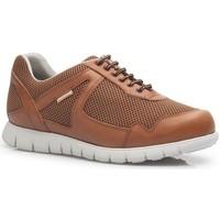 Sapatos Homem Sapatilhas Calzamedi DEPORTIVO CORDONES CUERO