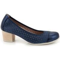 Sapatos Mulher Escarpim Pitillos  Azul