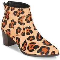 Sapatos Mulher Botins Bocage MELODY Leopardo