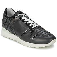 Sapatos Mulher Sapatilhas Bikkembergs KATE 420 Preto