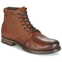 Sapatos Homem Botas baixas Jack & Jones JUSTIN Castanho