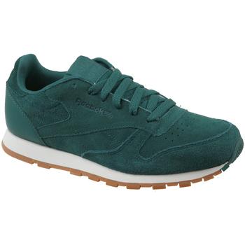 Sapatos Criança Sapatilhas Reebok Sport CL Leather SG Vert