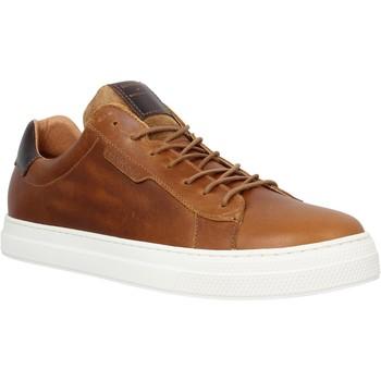 Sapatos Homem Sapatilhas Schmoove 98563 Castanho