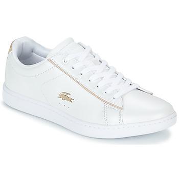 Sapatos Mulher Sapatilhas Lacoste CARNABY EVO 118 6 Branco