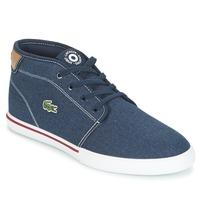 Sapatos Homem Sapatilhas Lacoste AMPTHILL 118 1 Azul