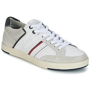 Sapatos Homem Sapatilhas Levi's BEYERS Branco
