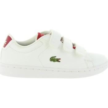 Sapatos Criança Sapatilhas Lacoste 34SPC0001 CARNABY Blanco