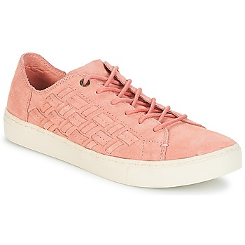 Sapatos Mulher Sapatilhas Toms LENOX Bloom