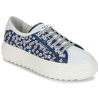 Sapatos Mulher Sapatilhas Serafini SOHO Azul