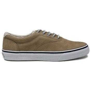 Sapatos Homem Sapatilhas Sperry Top-Sider STRIPER CVO WASHABLE TAUP Bege
