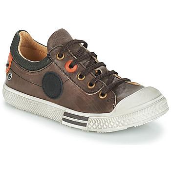 Sapatos Rapaz Botas baixas GBB UGO Castanho