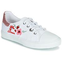 Sapatos Rapariga Sapatilhas Catimini SAXIFAGE Branco