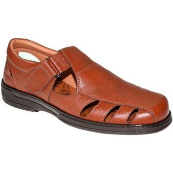 Sapatos Homem Sandálias Primocx Sandálias masculinas especiais para diabéticos muito confortávei marrón