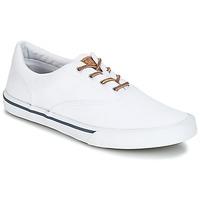 Sapatos Homem Sapatilhas Sperry Top-Sider STRIPER II CVO WASHED Branco