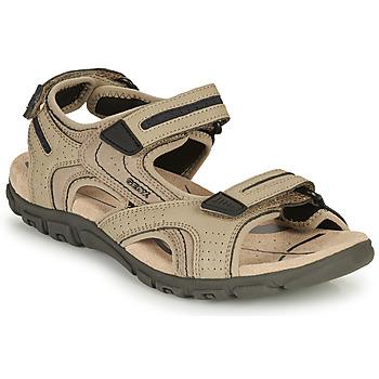 Sapatos Homem Sandálias Geox S.STRADA D Areia / Marinho