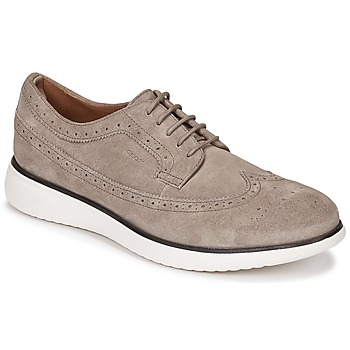 Sapatos Homem Sapatos Geox WINFRED C Toupeira