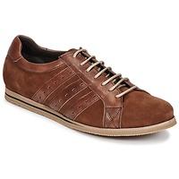 Sapatos Homem Sapatilhas So Size GOPINETTE Castanho