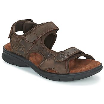 Sapatos Homem Sandálias Panama Jack SALTON Castanho