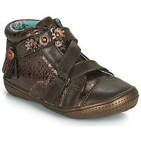 Sapatos Rapariga Botas baixas Catimini ROQUETTE Castanho / Ouro