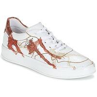 Sapatos Mulher Sapatilhas Felmini CRASKY Branco / Vermelho