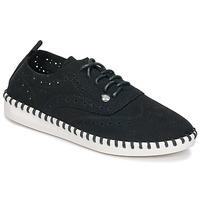 Sapatos Mulher Sapatos Les Petites Bombes DIVA Preto