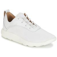 Sapatos Homem Sapatilhas Timberland FLYROAM Branco