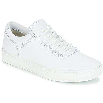 Sapatos Homem Botas baixas Timberland ADVENTURE2.0 CUPSOLE Branco