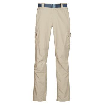 Textil Homem Calça com bolsos Columbia SILVER RIDGE II CARGO PANT Bege