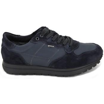 Sapatos Homem Sapatos aquáticos Igi&co Zapatillas Deportivas GTX 8741 azul