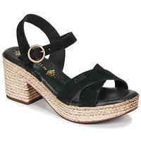 Sapatos Mulher Sandálias Musse & Cloud LARISE Preto
