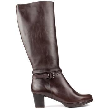 Sapatos Mulher Botas Kroc S DE COURO ALTO DO MARRON