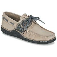 Sapatos Homem Sapato de vela TBS GLOBEK Bege