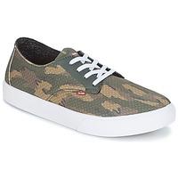 Sapatos Homem Sapatos estilo skate Globe Motley LYT Verde