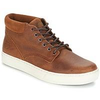 Sapatos Homem Botas baixas Timberland ADVENTURE 2 0 CUPSOL TAN Castanho