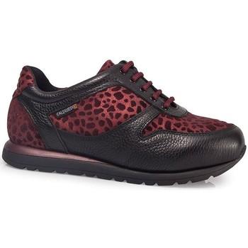 Sapatos Mulher Sapatilhas Calzamedi ORO BORDEAUX SPORTS SHOES W BORDEAUX
